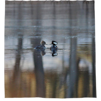 Hooded Mergansers and Pond Reflections Shower Curtain