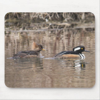 Hooded Mergansers Mouse Pad