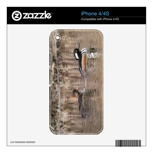 Hooded Mergansers Skins For The iPhone 4