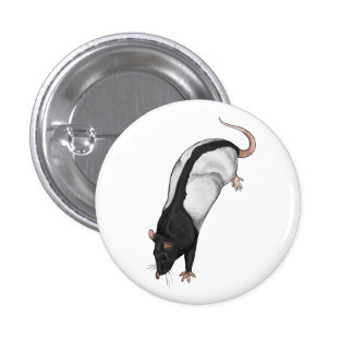 Hooded rat badge 1 inch round button