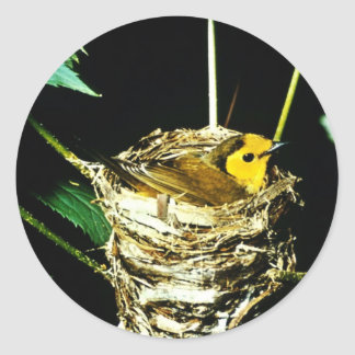 Hooded Warbler Round Stickers