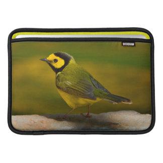 Hooded Warbler (Wilsonia Citrina) Adult Male Sleeve For MacBook Air
