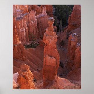 Hoodoo del martillo del Thor en rastro de Navajo Póster