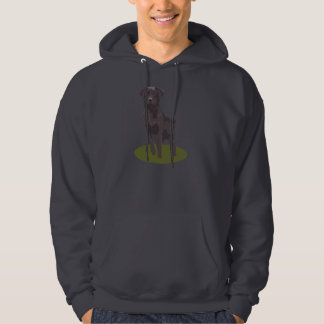 Hoods Sweat shirt grey - dog