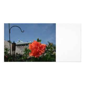 hook and hibiscus painting neat flower design personalized photo card