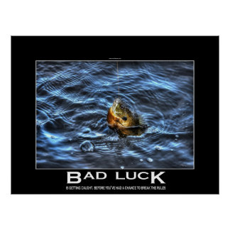 Hooked Bluegill Sun Fish Demotivational Poster