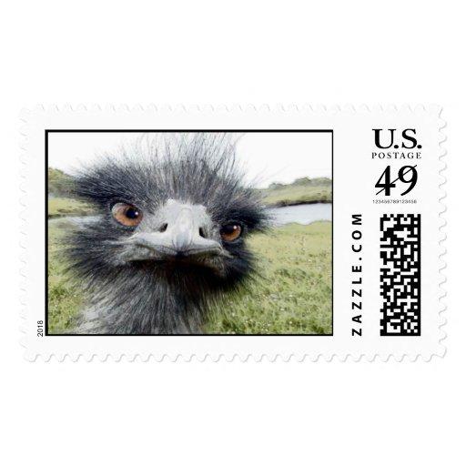 Hooks Postage Stamps