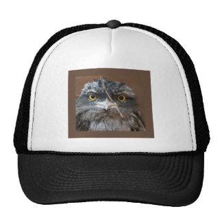 HOOO Are You? Mesh Hats