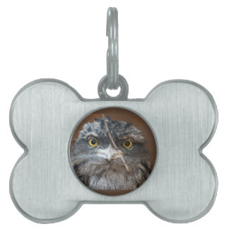 HOOO Are You? Pet ID Tag