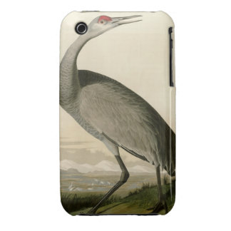 Hooping Crane iPhone 3 Covers