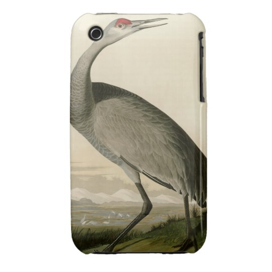 Hooping Crane iPhone 3 Case