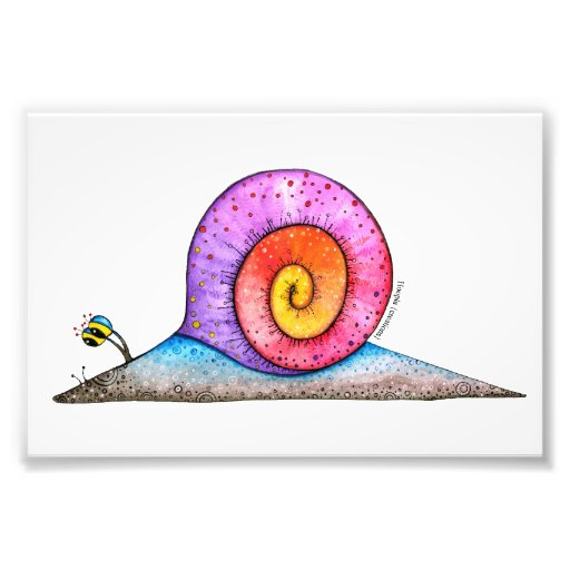Hoopla Snail Photo