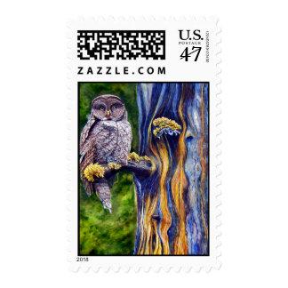 Hoo's Look'n Postage Stamp