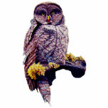 """Hoo&#39;s Look&#39;n Sculpture Pin<br><div class=""""desc"""">Hoo&#39;s Look&#39;n a Great Gray Owl In Yellowstone National Park,  an Original Watercolor By JoLyn.</div>"""