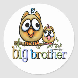 Hoot for Big Brother - Baby Sis Classic Round Sticker