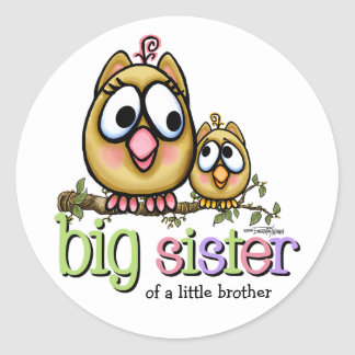 Hoot for Big Sister Classic Round Sticker