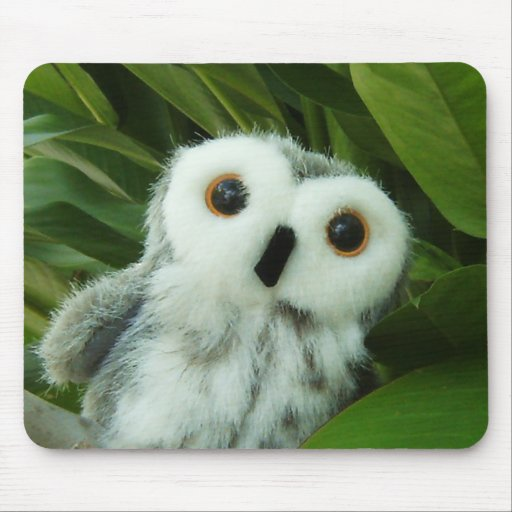Hoot Hoot! Mouse Pads