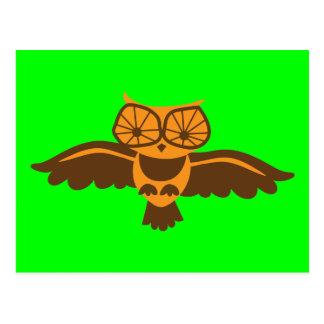 HOOT HOOT owl bird cute! Postcard