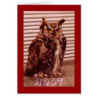 Hoot Owl Valentine s Card
