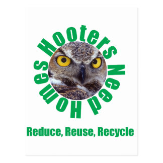 Hooters Need Homes Postcard