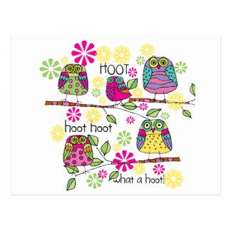 Hootie Owls Postcard
