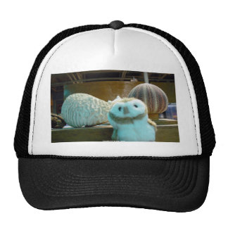Hootin' Annie and Coral Trucker Hat
