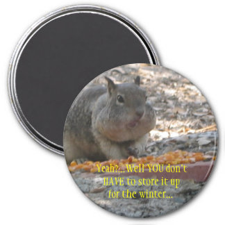 Hoover Squirrel Magnet