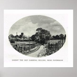 Hop gardens, Selling, Faversham Poster