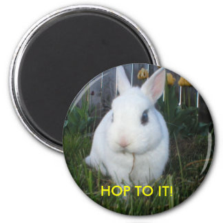 HOP TO IT! BUNNY MAGNET