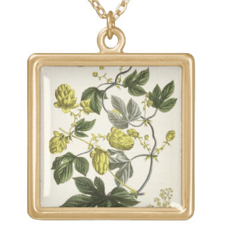 Hop Vine, from 'The Young Landsman', published Vie Gold Plated Necklace