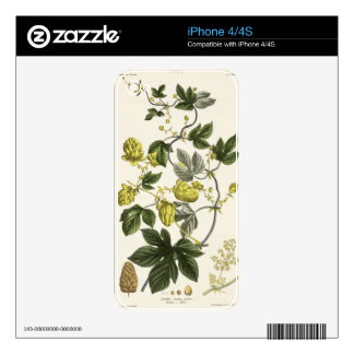 Hop Vine, from 'The Young Landsman', published Vie iPhone 4S Skins