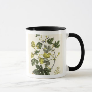 Hop Vine, from 'The Young Landsman', published Vie Mug