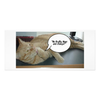 Hope and Change/Cat Humor Rack Card