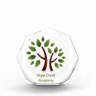 Hope Creek Academy Award