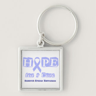 Hope for a Cure - Stomach Cancer Keychain