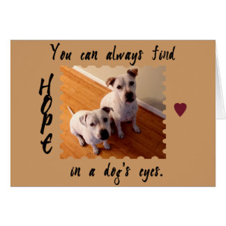 Hope in a Dog's Eyes Card