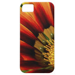 Hope iPhone 5 Cases