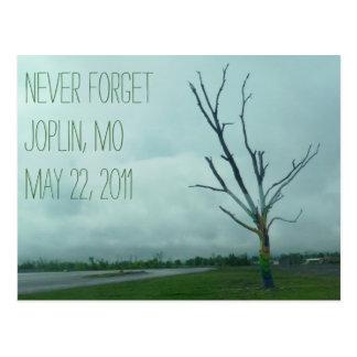 HOPE (Joplin 2011) Post Card