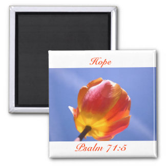 Hope Magnet NOG