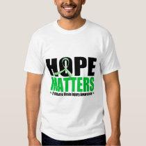 Hope Matters Brush Ribbon Traumatic Brain Injury T-Shirt