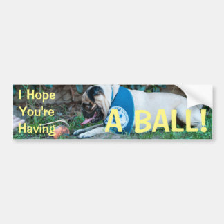 Hope You're Having A BALL! Bumper Sticker