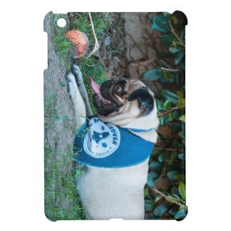 Hope You're Having A BALL! iPad Mini Case