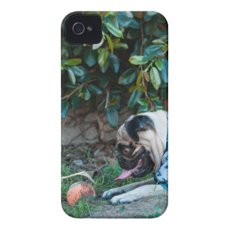 Hope You're Having A BALL! iPhone 4 Cases