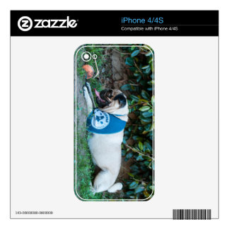 Hope You're Having A BALL! iPhone 4S Skins