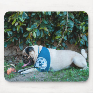 Hope You're Having A BALL! Mouse Pad