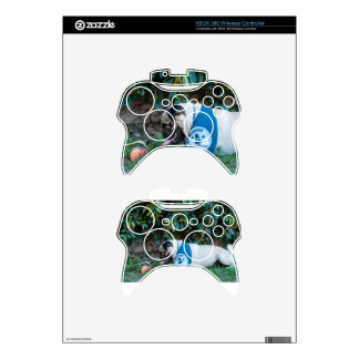 Hope You're Having A BALL! Xbox 360 Controller Skins