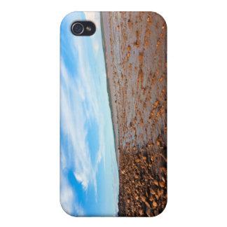 Hopewell Beach - iPhone 4 Case