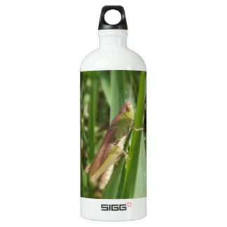 Hopper Aluminum Water Bottle