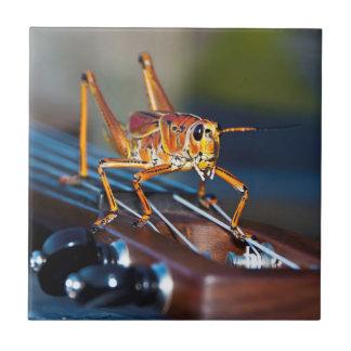 Hopper on a Headstock Ceramic Photo Tile