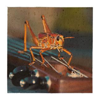 Hopper on a Headstock Cork Coasters